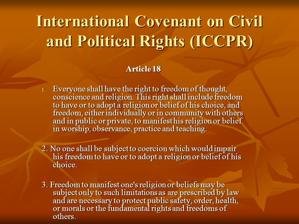 What is the International Covenant on Civil and Political Rights?